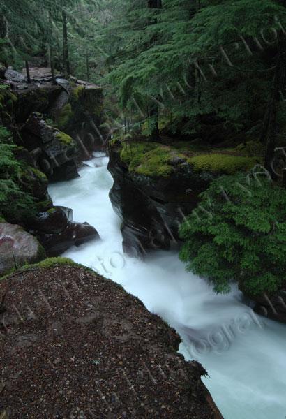 Avalanche Creek Gorge