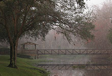 Bridge Over Mist Covered Creek