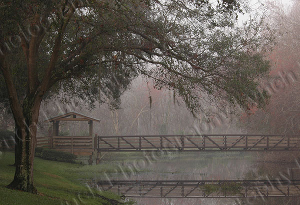 Bridge Over Mist Covered Creek