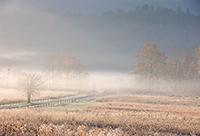 Cades Cove, Smoky Mountains TN 0297