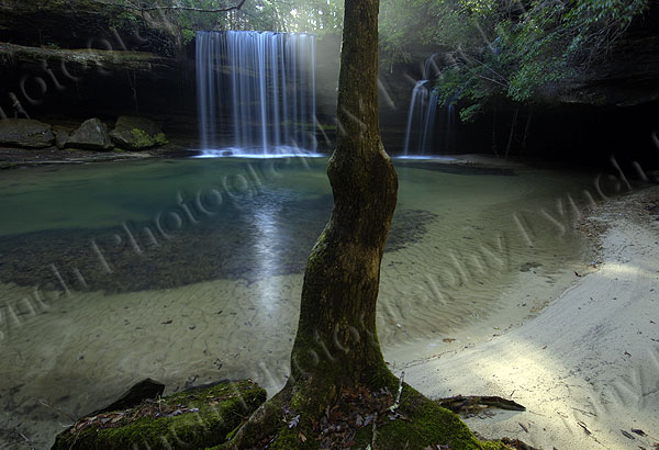 Caney Creek Falls #3