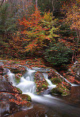Cascades On Little River Road