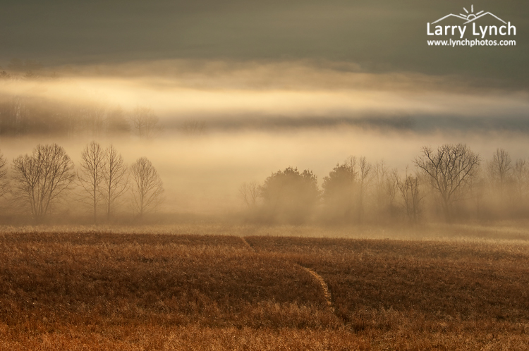 Cades Cove Mist, Great Smoky Mountains NP