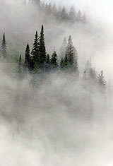 Fog On Mountain Ridge