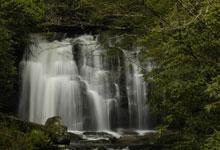 Meigs Falls #1