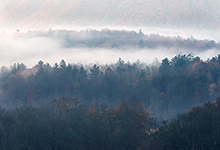 Morning Fog in Cades Cove