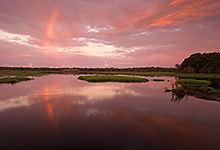 Rainbow at Sunrise,Myakka River LML0006-2